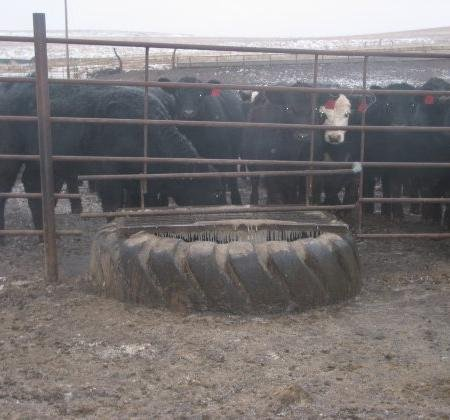 livestock water tanks from recycled tires